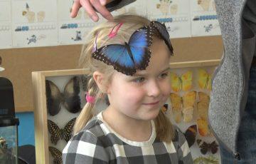 Egzotyczne motyle na wyciągnięcie ręki
