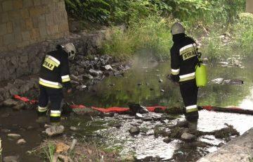 Strażacy oczyścili rzekę